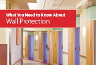 what you need to know about wall protection ebook