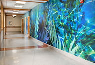 riley hospital for children case study