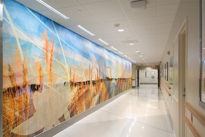 Acrovyn Wall Protection By Design Cs