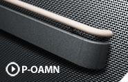 P-OAM & P-RAM